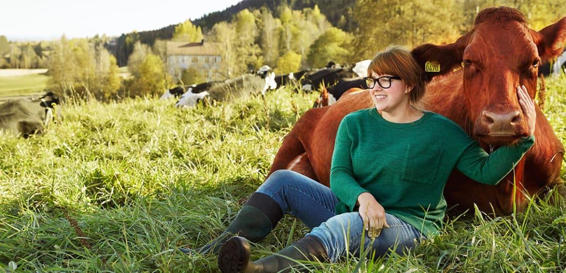 Mjölkbonde på Arla