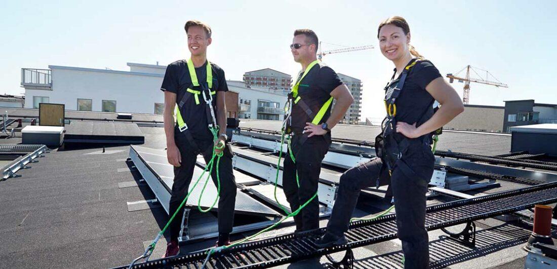 Anställda på Stockholmshem på ett tak med solceller